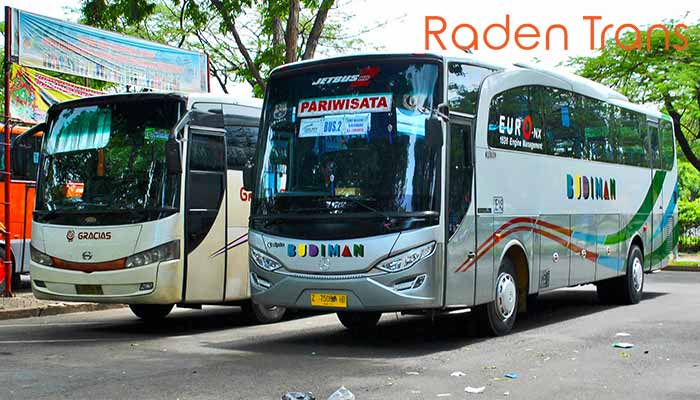 Harga Sewa Bus Pariwisata Di Ambon Murah 2020 Raden Trans