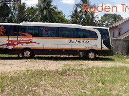 Daftar Harga Sewa Bus Pariwisata di Jambi Murah Terbaru