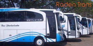 Daftar Harga Sewa Bus Pariwisata di Jayapura Murah Terbaru