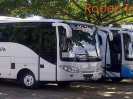 Daftar Harga Sewa Bus Pariwisata di Makassar Murah Terbaru