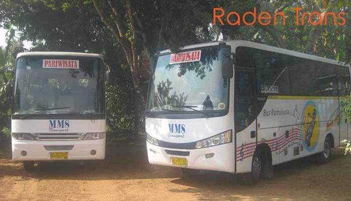 Daftar Harga Sewa Bus Pariwisata di Palangka Raya Murah Terbaru