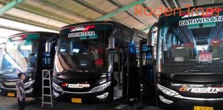 Daftar Harga Sewa Bus Pariwisata di Lamongan Murah Terbaru